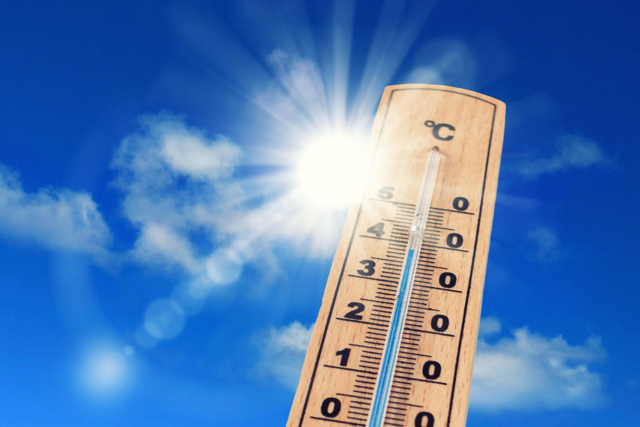 Grosses chaleurs et épisodes de canicule : les précautions à prendre